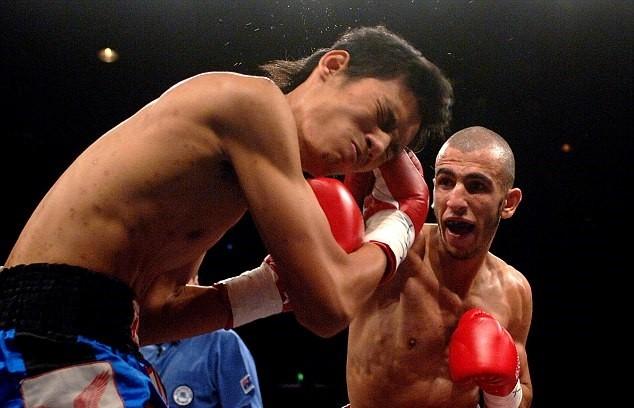 Boxeadores australianos IS (3)