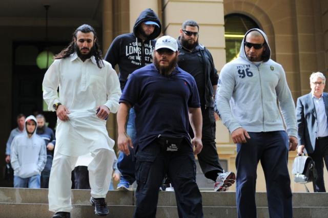 Boxeadores australianos IS (5)